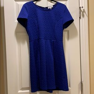 Electric Blue Triangle Textured Dress